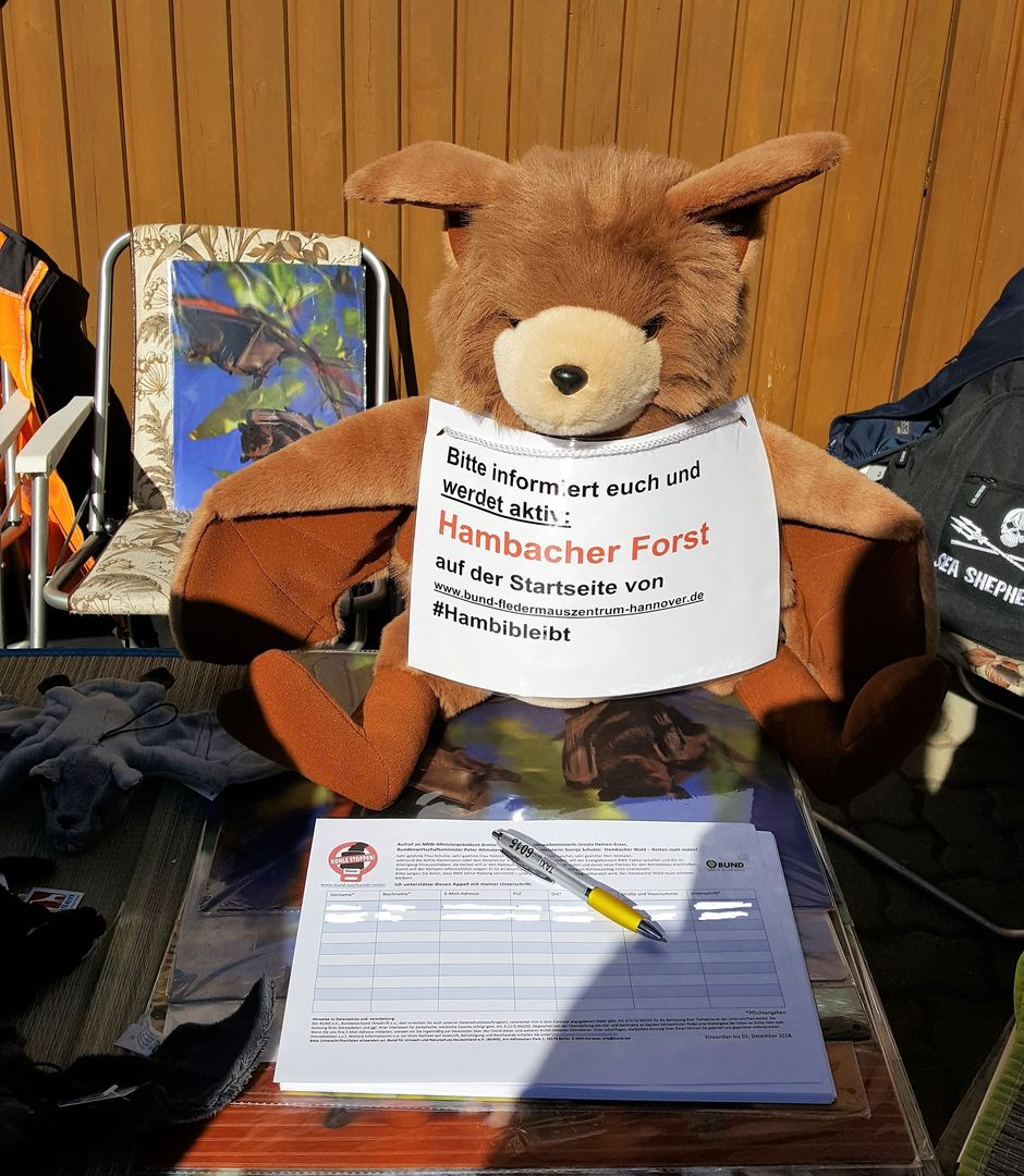 Das Foto zeigt Stofffledermaus Plüti, der Unterschriften für den Kohleausstieg sammelt // the photo shows soft toy bat Plüti who collects signatures for the End Coal petition