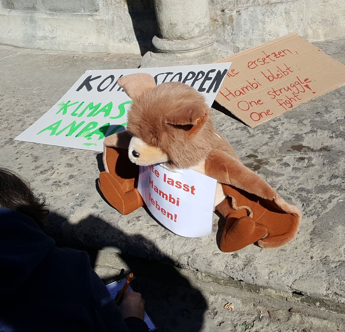 Das Foto zeigt Stofffledermaus Plüti, der in Braunschweig Unterschriften für den Kohleausstieg sammelt // the photo shows soft toy bat Plüti who collects signatures for the End Coal Petition in Braunschweig