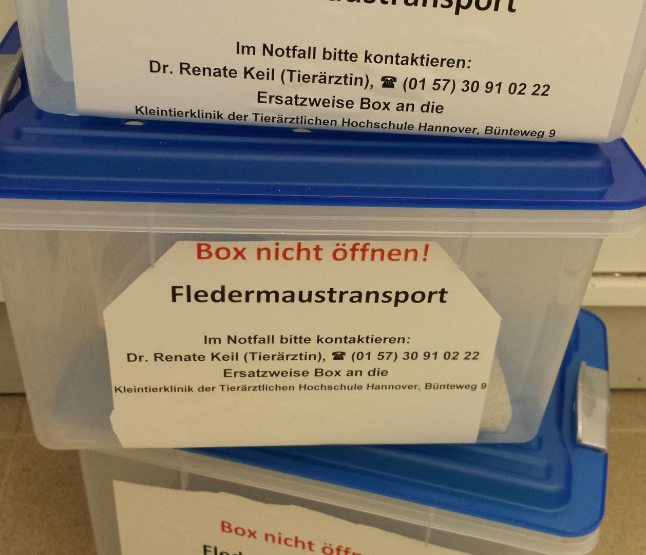 Das Foto zeigt Transportboxen für Fledermäuse, die mit der Notfalladresse beschriftet sind. // the photo shows transport boxes for bats, adressed with the emergency destination.